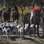 le depart pour la chasse emile Jacque venerie chasse à courre equipage huile sur toile tableau peinture(11) - Copie
