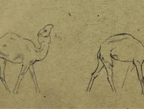 bernard boutet de monvel orientalisme art-déco esquisse dessin etude dromadaires chameaux (3)